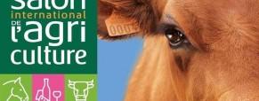 Lettre ouverte aux hypocrites qui ont assassiné l'agriculture française